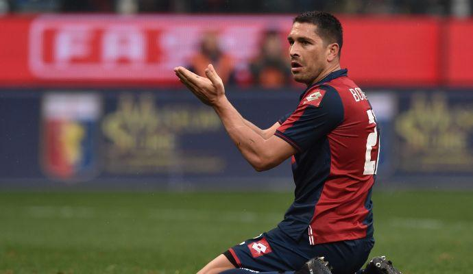 Genoa, Borriello verso una maglia da titolare
