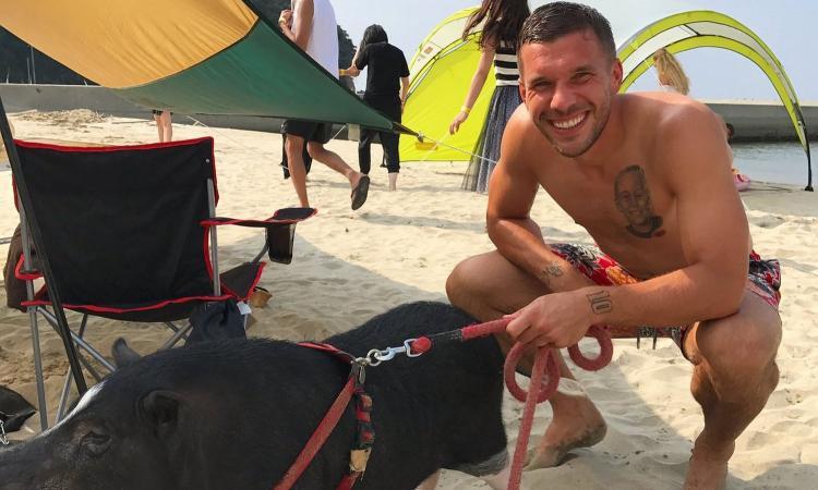 Podolski e il suo nuovo maiale da compagnia: 'Riunito con Schweinsteiger'