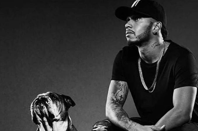 PIT STOP: Roscoe, il cane social di Hamilton che guadagna 700 dollari al giorno con Instagram FOTOGALLERY