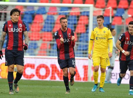 Borini, che impatto! Il Bologna regge un tempo, ma è il Var che salva il Verona... e Ayroldi da una figuraccia
