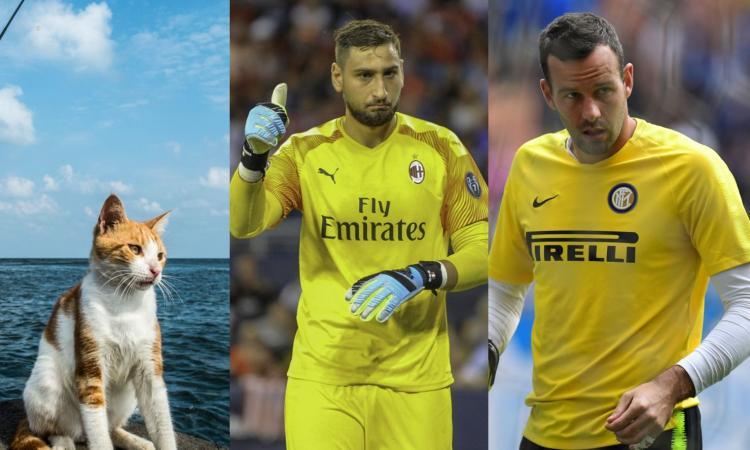 #Giornatadelgatto, da Handanovic e Donnarumma a Silvestri: qual è il miglior portiere della Serie A? VOTA