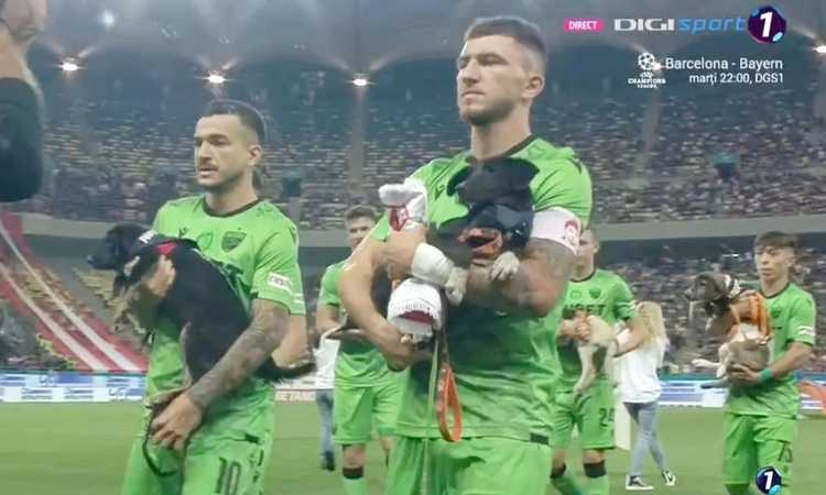 Romania, i calciatori scendono in campo con i cani randagi in braccio: 'Adottateli' VIDEO
